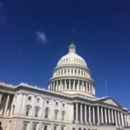 The United States Capitol (Photo by Cheryl Guido)